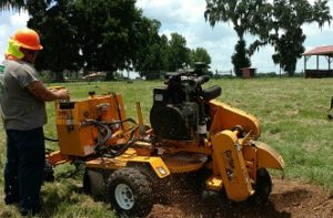 Lake wales stump grinding