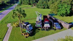 Avon Park tree service